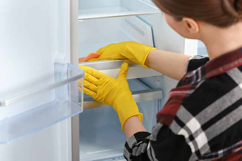 Clean Your Refrigerator With Gloves